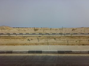 desert si camile