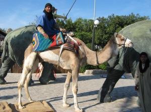 printul arab  si camila